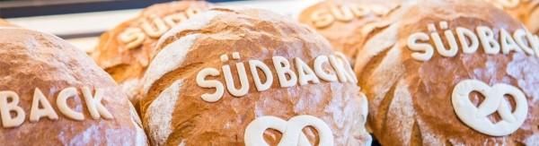 Выставка Sudback-2017