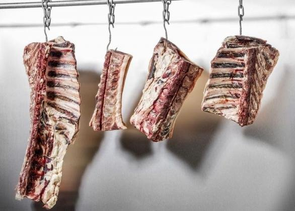Модули сухого вызревания мяса